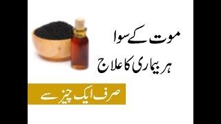2:25) Kalonji Benefits For Hair In Urdu Video - PlayKindle org