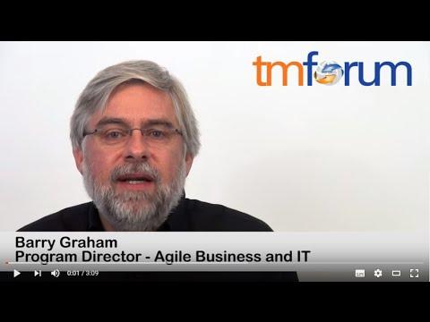 TM Forum Information Framework (SID)