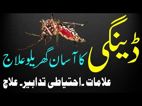 Dengue Bukhar Ka Asan Gharelu Ilaj | How To Treat Dengue Fever - Home Remedy