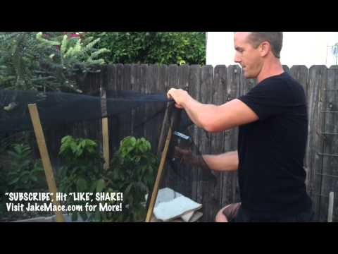 How to build a shade structure for young trees in Phoenix, AZ
