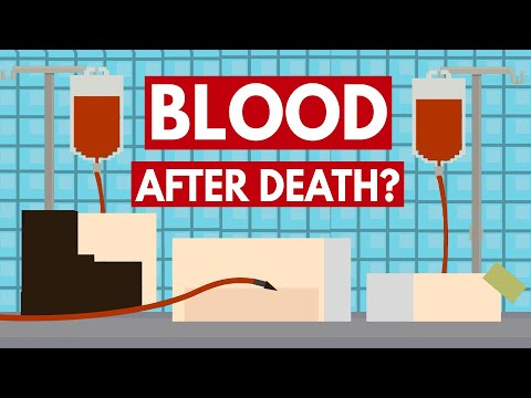 Can You Give Blood After Death? - Dear Blocko #1