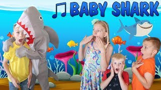 Download Baby Shark || Family Fun Pack Style Video