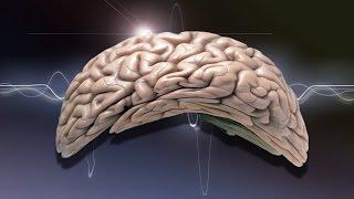 25 Mind Bending Scientific Truths To Challenge Your Brain