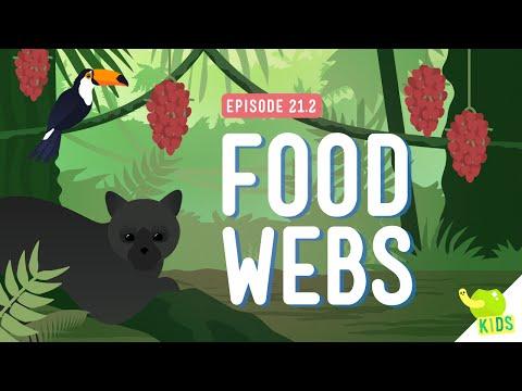 Food Webs: Crash Course Kids #21.2
