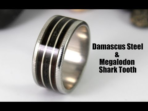 Damascus Steel Ring With Megalodon Shark Tooth & Wood Inlay (How To)