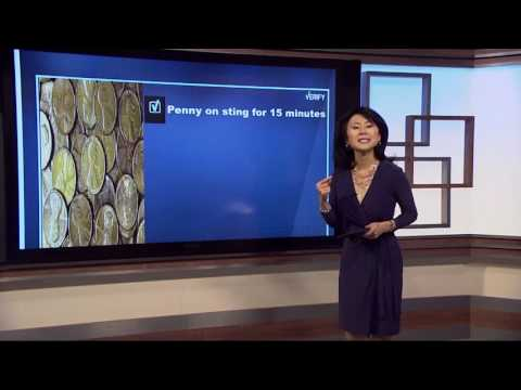 VERIFY: Do pennies relieve bee and wasp sting pain?