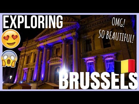 WALKED FOR HOURS EXPLORING BRUSSELS! | DAY 2 VLOG | I EVEN BOUGHT A WATER COOKER!