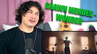 Vocal Coach Reacts to Shawn Mendes - Wonder