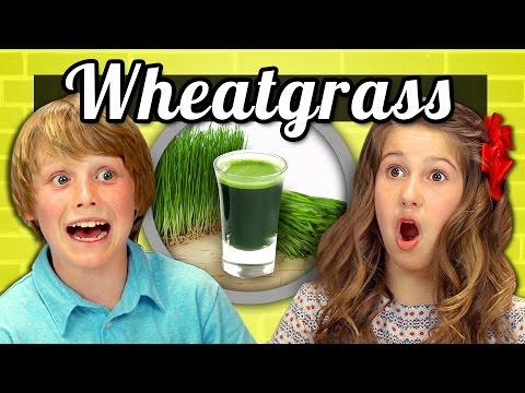 KIDS vs. FOOD #11 - WHEATGRASS SHOTS