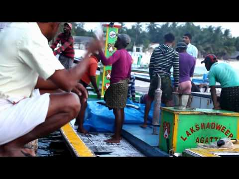 Fish for sale on Agatti island - Lakshadweep