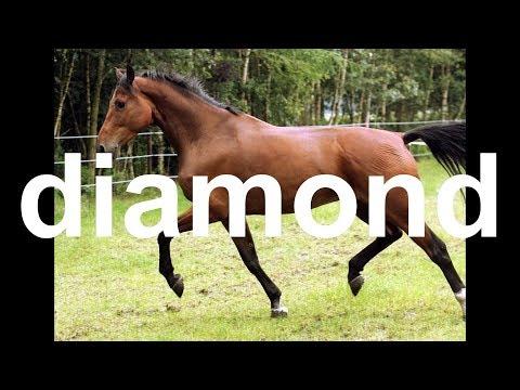 diamond.avi