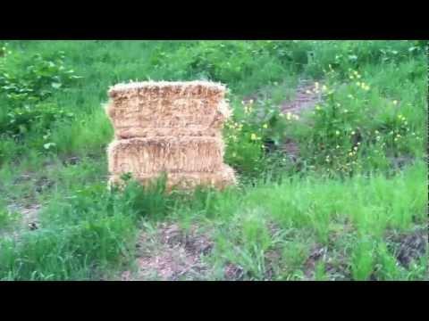 wild wild west 2012 - bow and arrow jam!