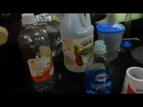 How to Trap Gnats and Fruit Flies