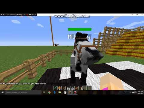 How to make a FAIRY HORSE mo creatures