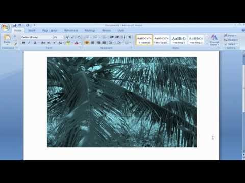 How to Change Color / Recolor Image in Microsoft Office Word