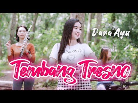 Download Lagu Bajol Ndanu Tembang Tresno Mp3