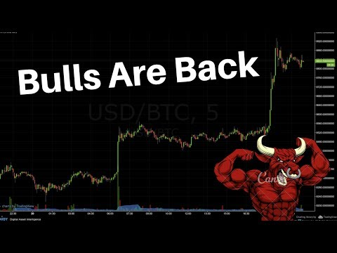 The Bulls Are Back in Town - Crypto Jumps by $30B