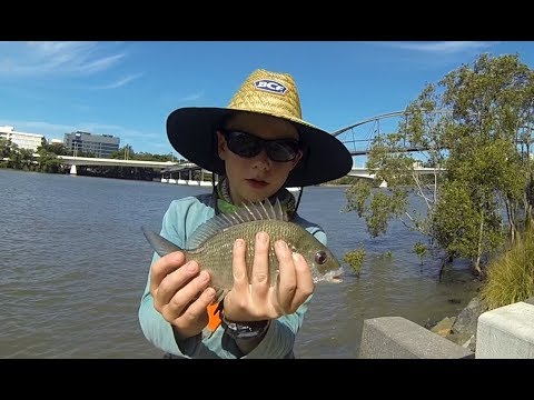 (part 1) LURE FISHING FOR BREAM IN THE BRISBANE RIVER!
