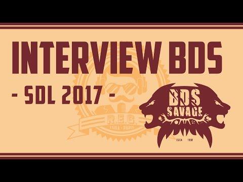 SDL 2017  -  Interview BDS