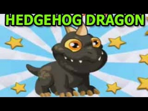HEDGEHOG DRAGON CITY Hoe To Breed Level Up Fast Attacks Review