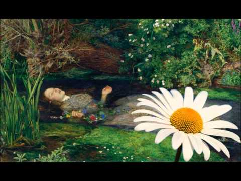 Daisy (from 'Ophelia and the Language of Flowers') by Kevin Jones
