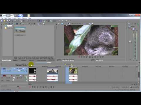 Export Sections of a Clip as Different Videos SONY VEGAS