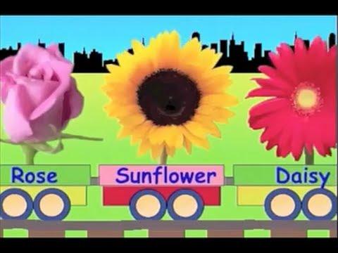 Learn Flower Train - learning for kids