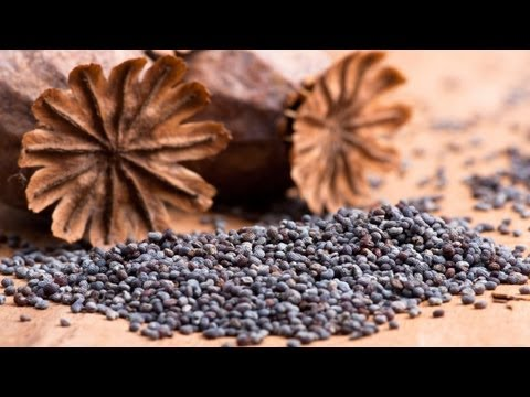 Health Potentials of Poppy Seeds
