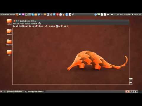 release and renew ip address in Ubuntu 12.04