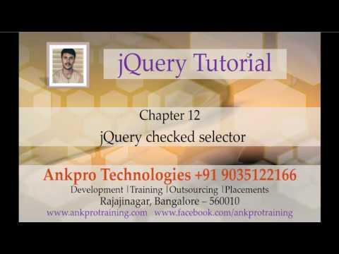 jQuery 12 - Selectors - checked selector