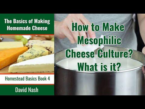 Recipe Mesophillic Starter