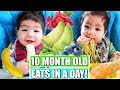 WHAT MY BABY EATS IN A DAY | 10 MONTHS OLD