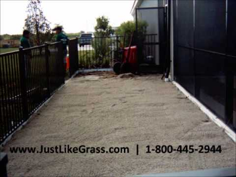 Artificial Grass Dog Run Install Florida - Sept 2011.wmv