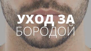 Download У тебя есть борода, я скажу тебе ″да″! Правильный уход за бородой. Video