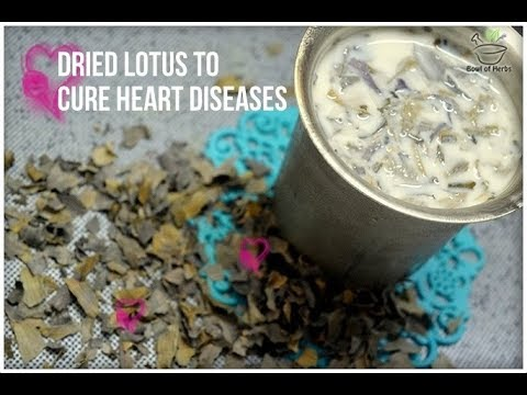 Lotus flower to cure heart diseases - Natural remedy