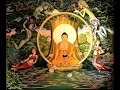 Phan Thi Bich Hang Noi Chuyen Voi Nguoi Am Chuyen Tam Linh L