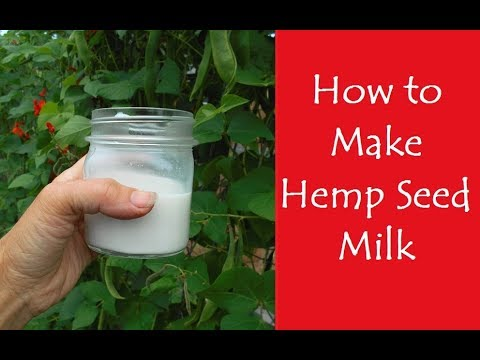 How to Make Hemp Seed Milk (and other Nut or Seed Milks)