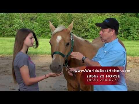 World's Best Horse Halter - Revolutionary New Equine Halter Design and Demonstration