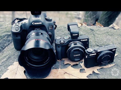 Choosing the Right Camera: Two Minute Tips with David Bergman