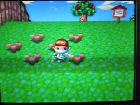 My hybrids in Animal Crossing City Folk