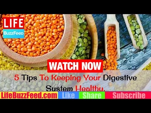 5 SIMPLE Tips To Keeping Your Digestive System Healthy | How to CLEAN Out Your Digestive System?