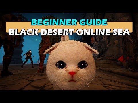 Beginner Guide - Black Desert Online South-East Asia (SEA)