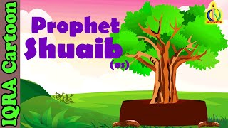 Shoaib (AS) - Prophet story ( No Music) - Islamic Cartoon