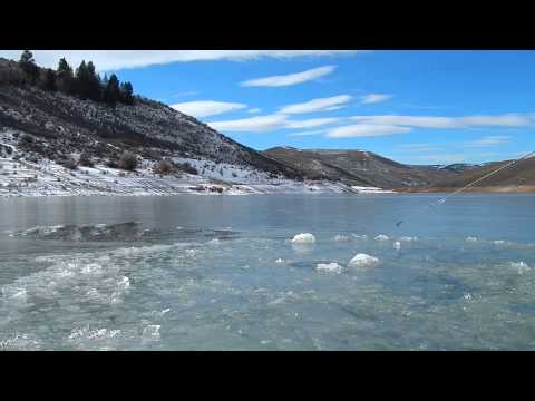 Large Tiger Trout - Ice Fishing