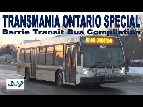 TO SPECIAL - Barrie Transit Bus Compilation