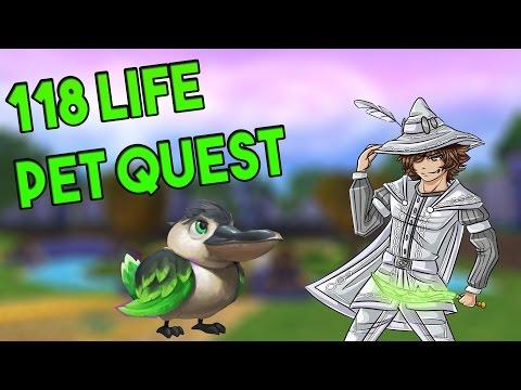 Wizard101: NEW 118 Life Pet Quest