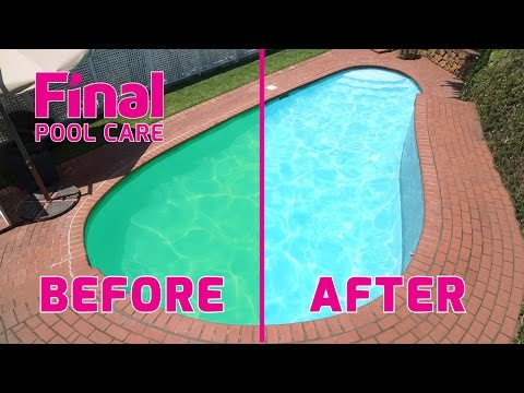 Control Algae - Create a Sparkling Clear Blue Swimming Pool with Final Pool Care