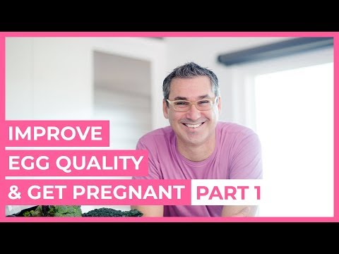 How to Improve Your Egg Quality to Get Pregnant Faster  Part 1 | Marc Sklar, The Fertility Expert