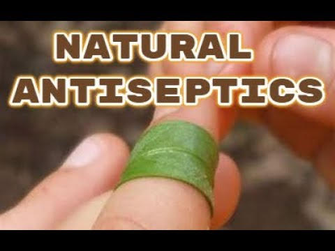 Natural Antiseptics - Ways To Sterilize A Wound Naturally - Heal Wounds and Prevent Infection