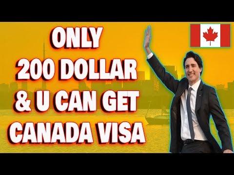 200 Dollar Per Day & Canada Visa Anyone Can Get